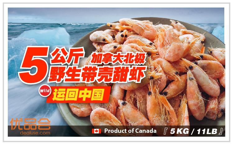 即将下线-加拿大北极甜虾【直邮中国】团购