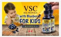 【买六送一,多买多送】加拿大VSC蜂膠含100%精純蜂膠,針對兒童口味,特別添加純天然藍莓,使兒童更能接受【加拿大VSC兒童藍莓蜂膠液30ml】原價$28,優品價9.88(含稅)長期使用可以提升免疫力,預防感冒,腔炎,喉嚨痛,過敏性鼻炎等!純天然無任何藥物