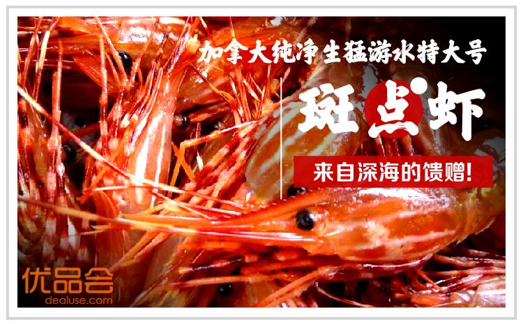 加拿大生猛游水斑点虾团购