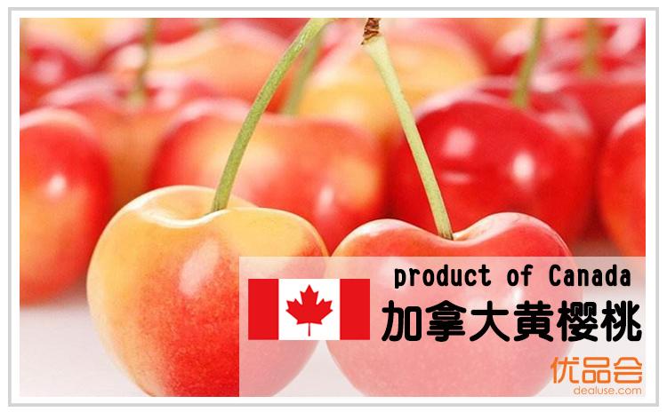 加拿大黄樱桃【直邮中国】团购