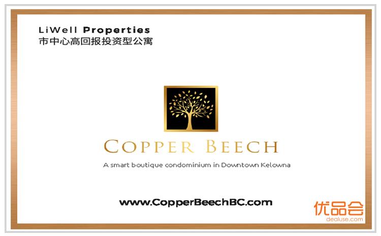 Cooper Beech团购