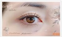 U2 eyelashes 推出新的睫毛嫁接优惠——【单根睫毛嫁接160根~】原价$138,优品价$68!快来体验一下变美的感觉~